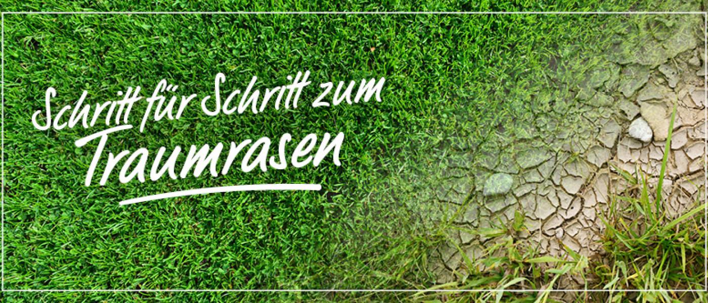 Die Frühjahrskur für den Rasen