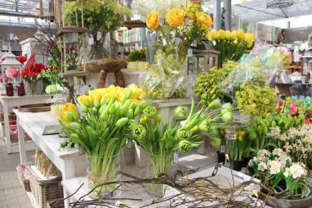 Rostock Gartencenter | Dekoration