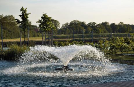 Rostock Gartencenter | Pflege und Zubehör